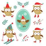 Colección colorida de los búhos lindos del invierno Fotografía de archivo libre de regalías