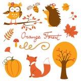 Colección colurful del bosque anaranjado Imagen de archivo libre de regalías