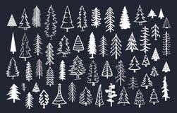 Colección de árboles de la conífera del abeto del pino del garabato libre illustration