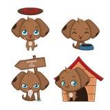 Colección de actitudes lindas de una mascota del perrito Foto de archivo libre de regalías