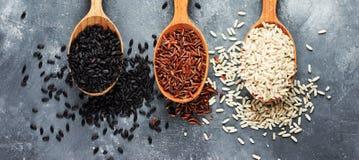 Colección de arroz exclusivo en cucharas de madera - arroz moreno, roja Fotografía de archivo