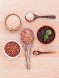 Colección de arroz tailandés del jazmín del grano entero Imagenes de archivo