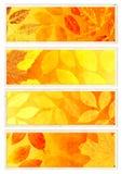 Colección de banderas del otoño ilustración del vector