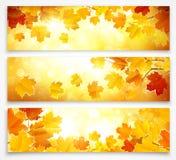 Colección de banderas del otoño Imágenes de archivo libres de regalías