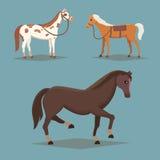 Colección de caballos aislados Animales del campo lindos del caballo de la historieta Fotos de archivo