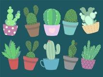 Colección de cactus colorido lindo del vector del estilo de la historieta y de plantas suculentas en potes stock de ilustración