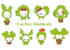 Colección de Castus Imagenes de archivo