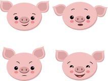 Colección de cerdos lindos en estilo de la historieta Cerdo aislado sistema de la emoción del vector