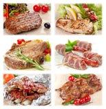 Colección de comida de la carne Foto de archivo libre de regalías
