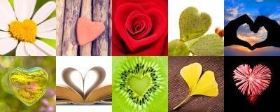 Colección de corazones, concepto del día de tarjetas del día de San Valentín del amor foto de archivo