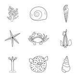 Colección de criaturas dibujadas mano del mar en la mono línea estilo moderna en el fondo blanco Cangrejo del vector, estrella de Imagen de archivo
