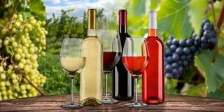Colección de cristales de botellas del blanco rojo exquisito y del vino rosado en la tabla de madera delante del viejo fondo del  imagen de archivo libre de regalías