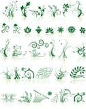Colección de diseños florales Fotos de archivo libres de regalías