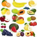 Colección de diversas frutas aisladas en el fondo blanco ilustración del vector