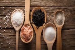 Colección de diversos tipos de sal Imagen de archivo libre de regalías
