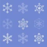 Colección de escamas de la nieve