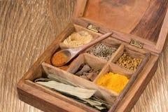 Colección de especias indias en caja de madera Fotografía de archivo libre de regalías