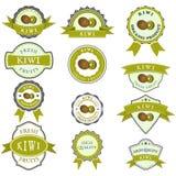 Colección de etiquetas coloridas del kiwi Ilustración del Vector