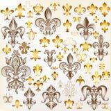 Colección de flor de lis real del vector para el diseño Imagen de archivo libre de regalías