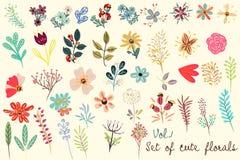 Colección de floral lindo del vector en estilo simple rústico grande stock de ilustración