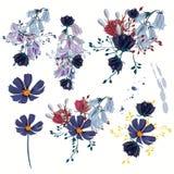 Colección de flores realistas del vector para el diseño libre illustration