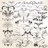 Colección de flourishes del vintage del vector y de elementos del remolino Foto de archivo libre de regalías