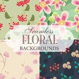 Colección de fondos inconsútiles en el tema del golpeteo floral Fotos de archivo