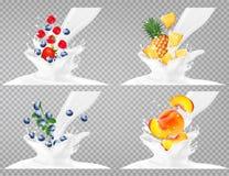 Colección de fruta en un chapoteo de la leche Imagen de archivo