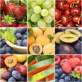 Colección de frutas frescas Foto de archivo