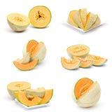 Colección de frutas frescas del melón Fotos de archivo libres de regalías