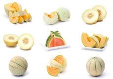 Colección de frutas frescas del melón Foto de archivo libre de regalías