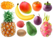 Colección de frutas tropicales imágenes de archivo libres de regalías