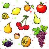 Colección de frutas y de baya jugosas de la historieta Ilustración del vector Sistema de iconos coloridos de la fruta y de la bay libre illustration