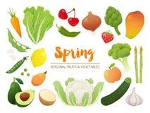 Colección de frutas y verduras estacionales Collec del tiempo de primavera Fotos de archivo libres de regalías