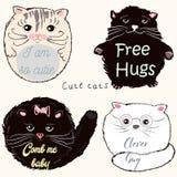 Colección de gatos lindos del vector ilustración del vector