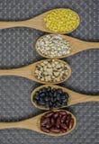 Colección de grano de cereal en cuchara de madera en fondo marrón Imágenes de archivo libres de regalías