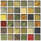 Colección de hierbas y de especias fotos de archivo