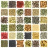 Colección de hierbas y de especias imagenes de archivo