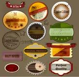 Colección de hojas de arce del vector y de siluetas para el diseño Fotos de archivo libres de regalías