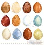 Colección de huevos coloridos del pollo de la acuarela Foto de archivo