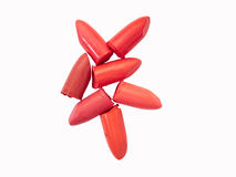 Colección de lápices labiales aislados en blanco Foto de archivo libre de regalías