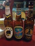 Colección de la cerveza del safari Foto de archivo
