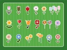 Colección de la flor ilustración del vector
