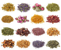 Colección de la flor y del té herbario Foto de archivo libre de regalías