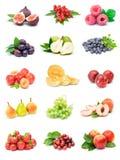 Colección de la fruta Foto de archivo libre de regalías
