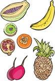 Colección de la fruta stock de ilustración