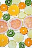 Colección de la fruta cítrica Fotografía de archivo