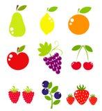 Colección de la fruta del vector Fotografía de archivo