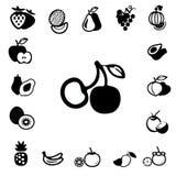 Colección de la fruta y de la baya Imagen de archivo