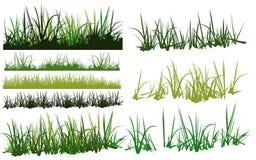 Colección de la hierba Fotografía de archivo libre de regalías